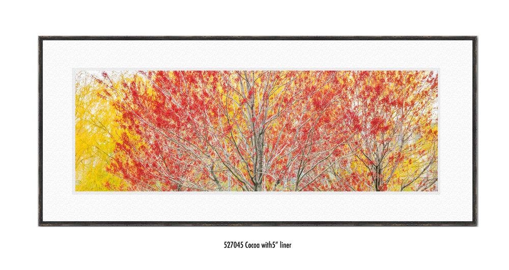 Autumn-527045-5-wht.jpg