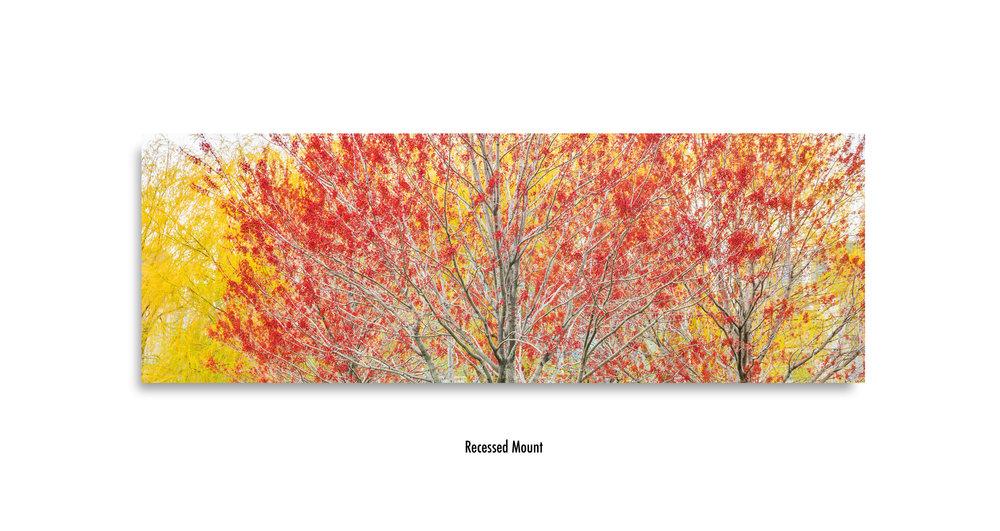 Autumn-recessed-mount.jpg