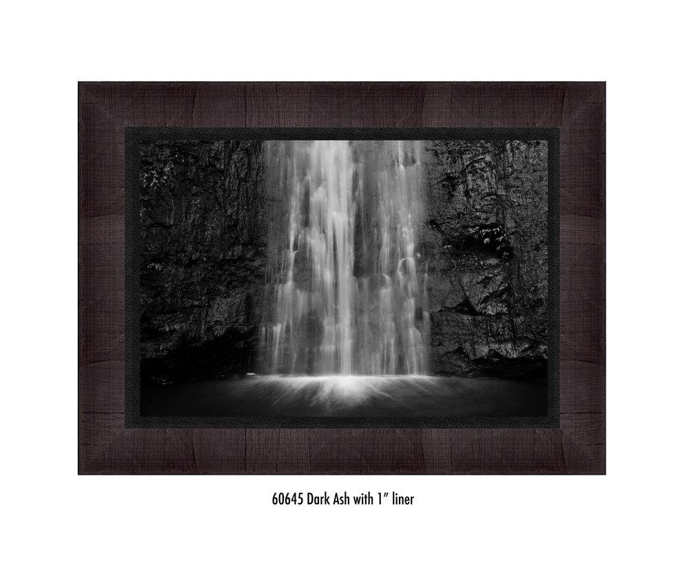 Manoa-Falls-60645-1-blk.jpg