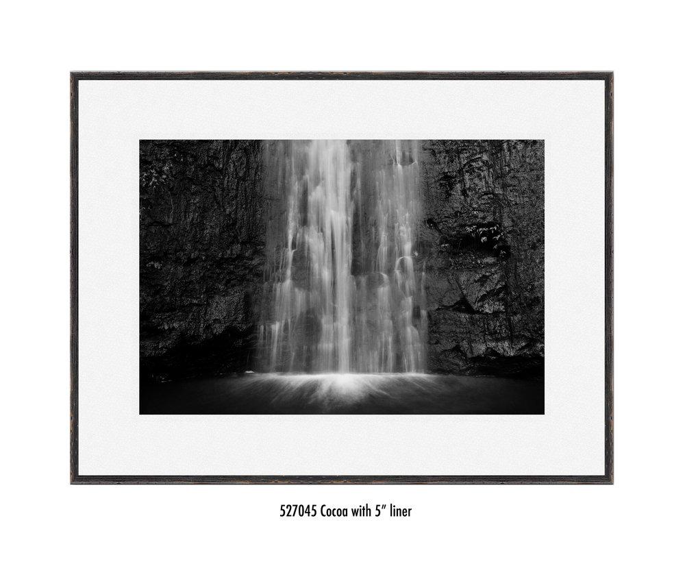 Manoa-Falls-527045-5-wht.jpg