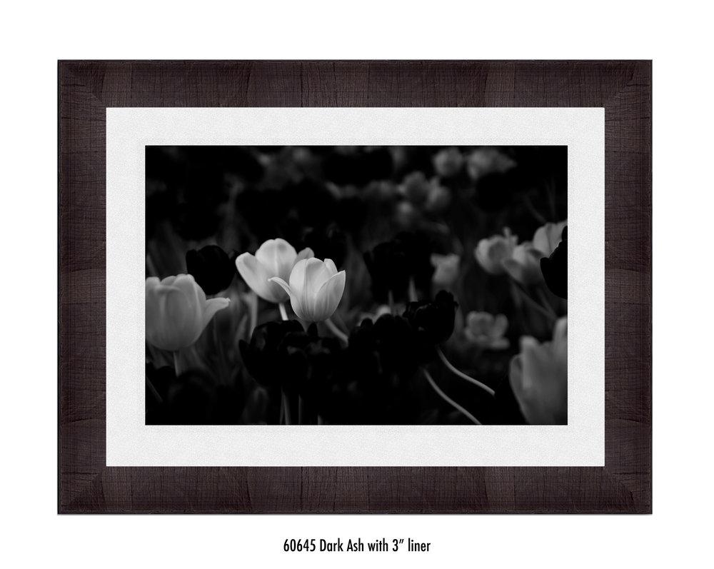 White-Flower-60645-3-wht.jpg