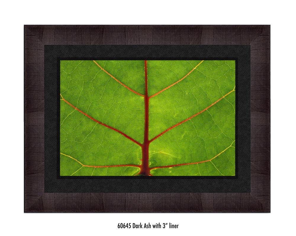 Leaf-60645-3-blk.jpg