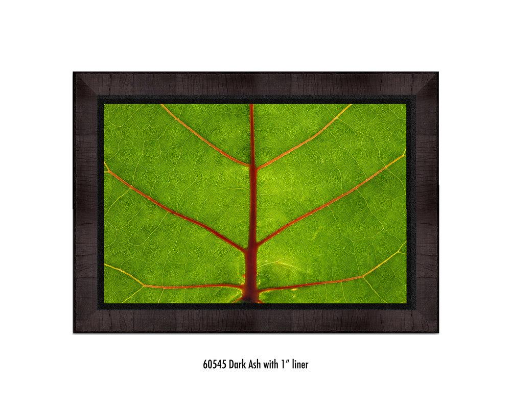Leaf-60545-1-blk.jpg