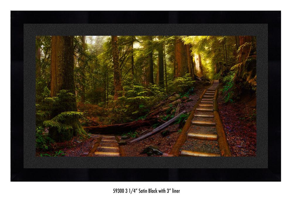 Pathways-59300-blk.jpg
