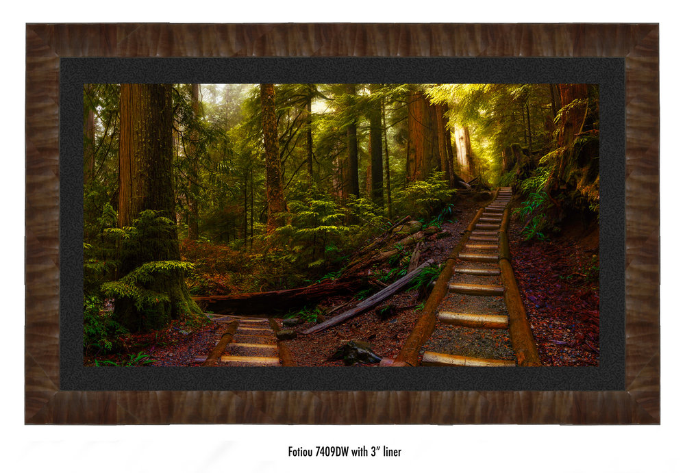 Pathways-7409DW-blk.jpg