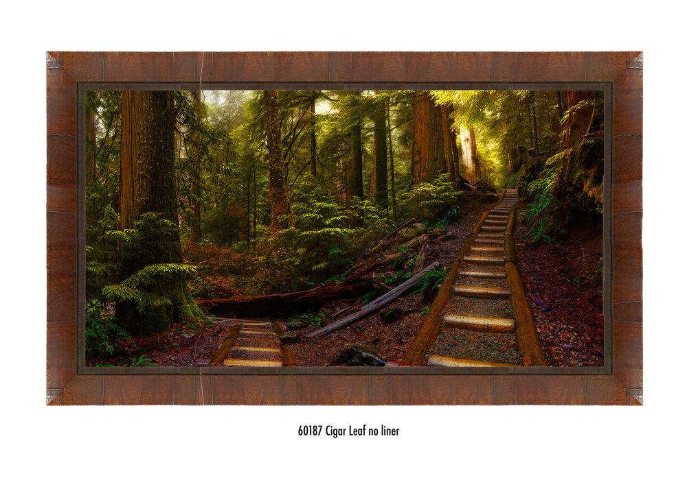 Pathways-60187-no-liner.jpg