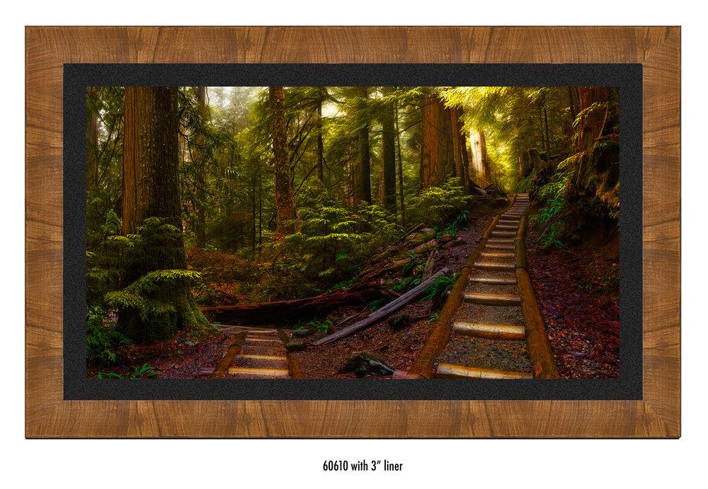 Pathways-60610-blk.jpg