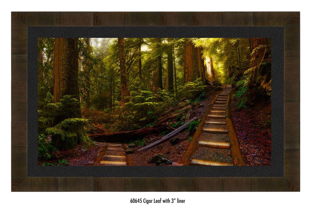 Pathways-60645-blk.jpg