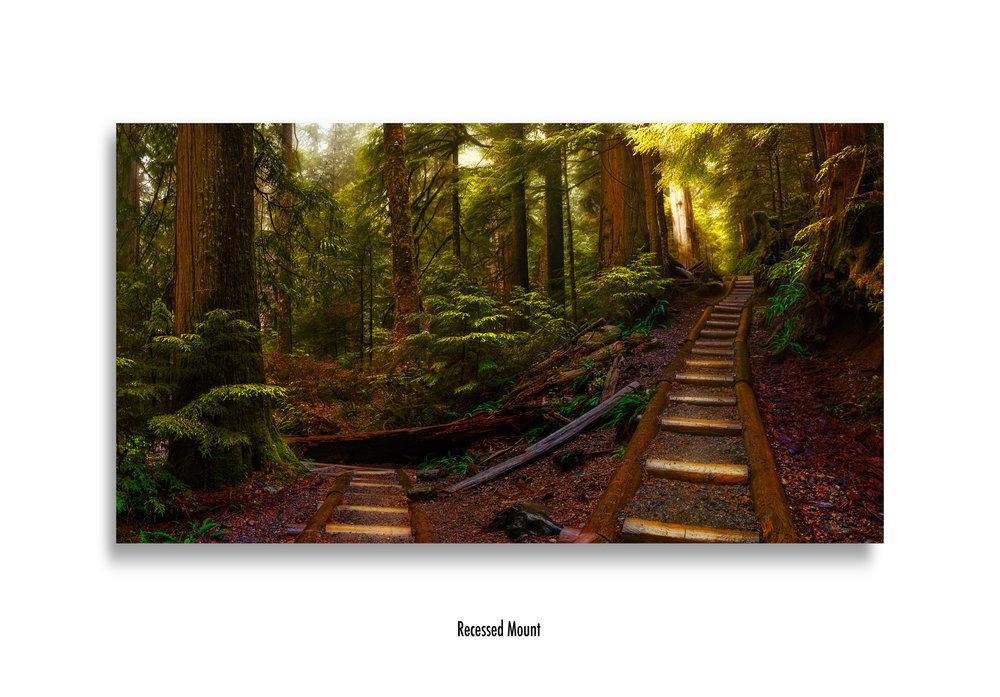 Pathways-recessed-mount.jpg