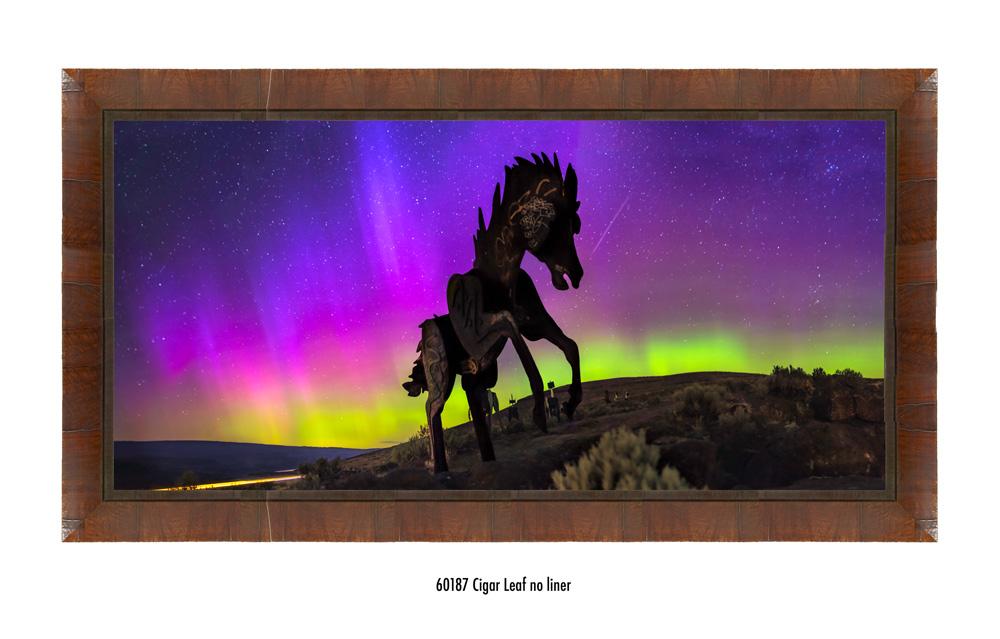 Wild-Horses-60187-none.jpg