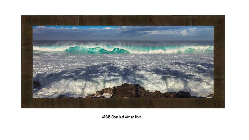 Eddie-Wave-60645-none.jpg