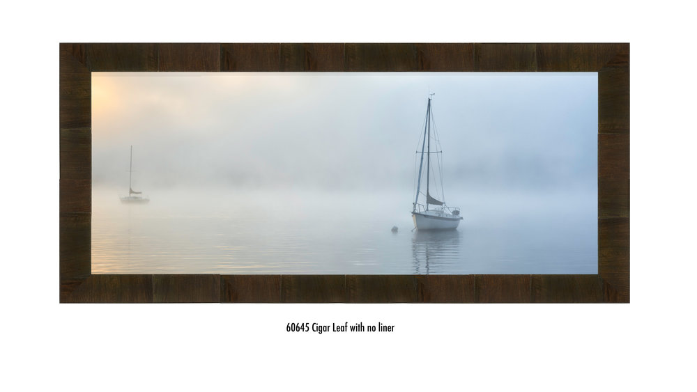 Safe-at-Harbor-60645-none.jpg