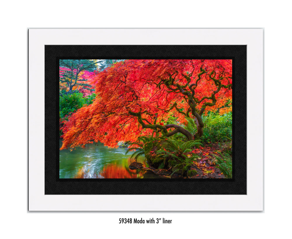 Tree-of-Fire-59348-3-blk.jpg