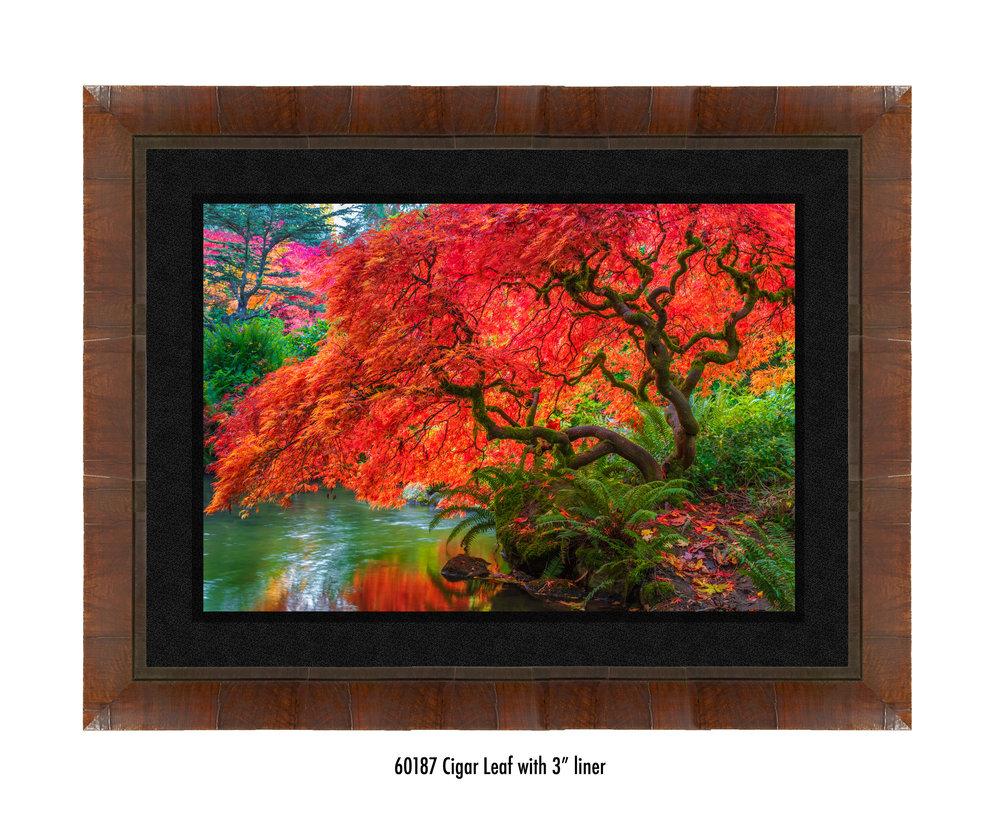 Tree-of-Fire-60187-3-blk.jpg