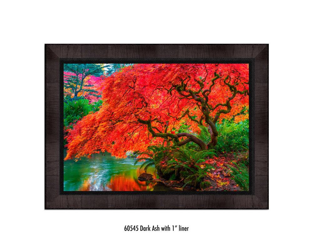 Tree-of-Fire-60545-1-blk.jpg