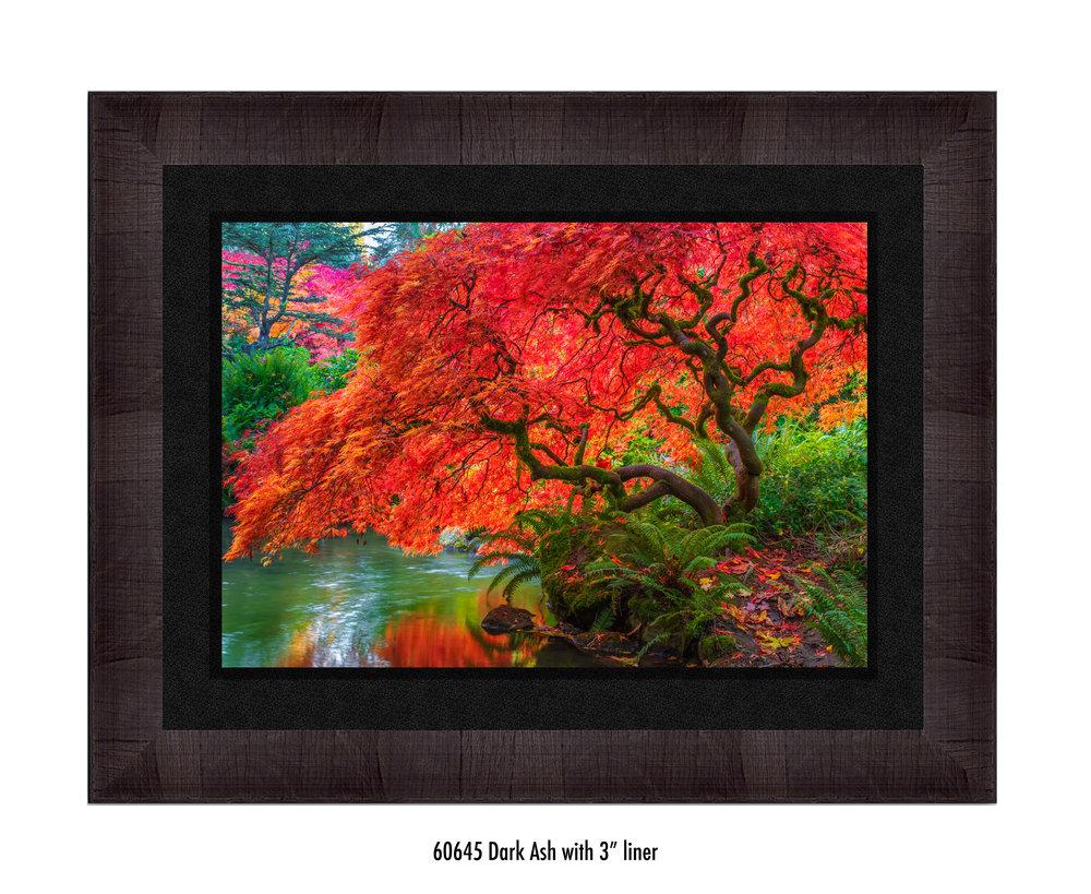 Tree-of-Fire-60645-3-blk.jpg