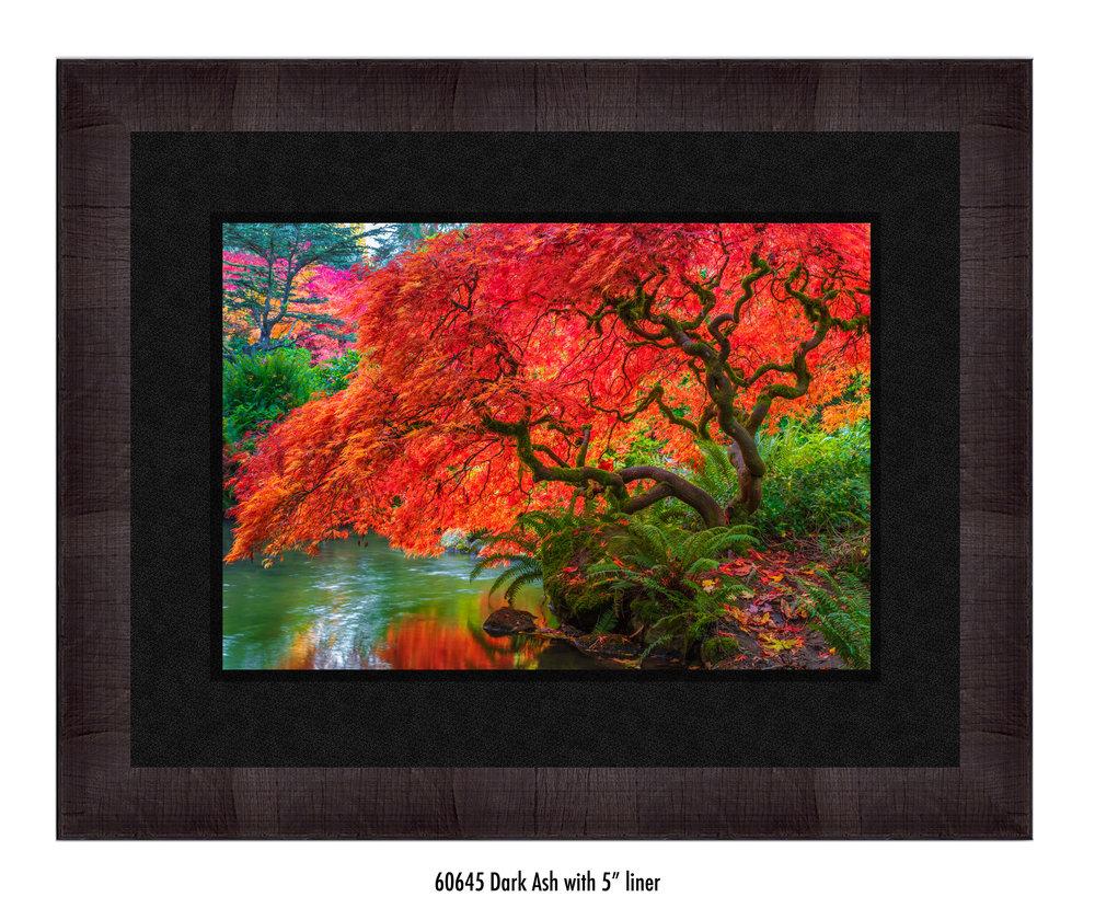 Tree-of-Fire-60645-5-blk.jpg
