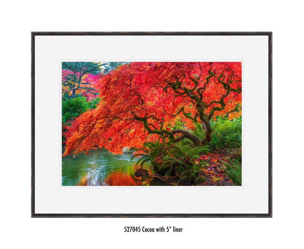 Tree-of-Fire-527045-5-wht.jpg