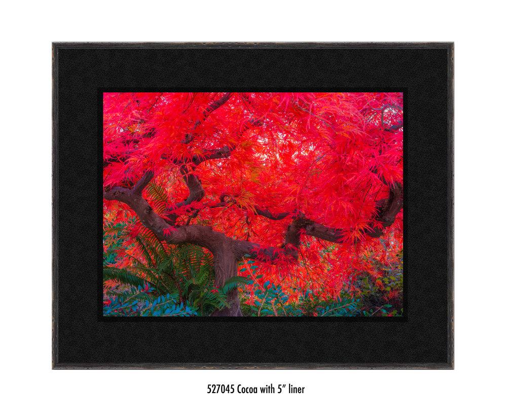 Scarlet-Tree-527045-5-blk.jpg