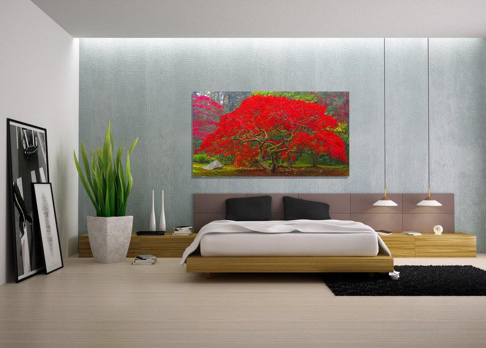 Avendasora-in-home-I.jpg