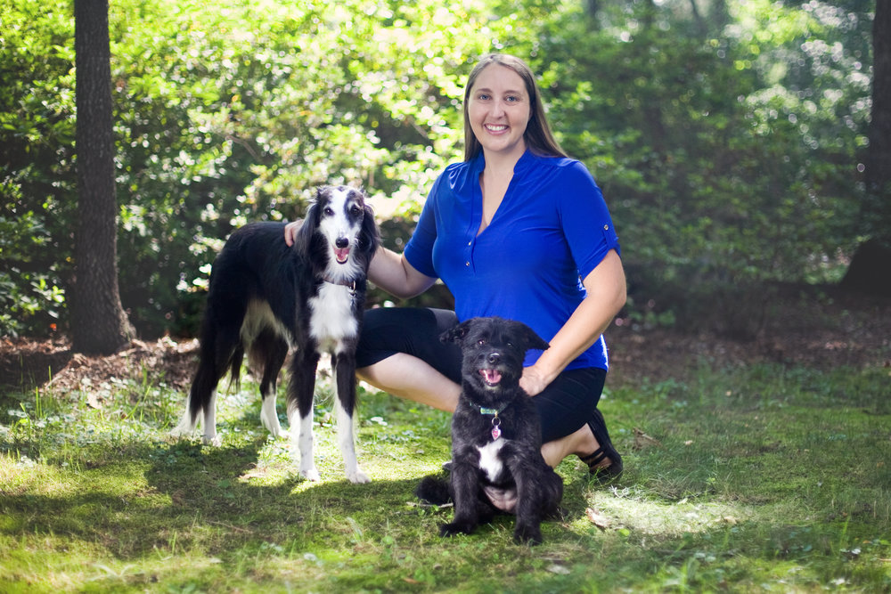 I am certified dog behaviorist offering positive and professional dog training to Greenville, SC.