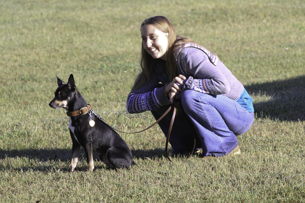Using positive dog training with a certified dog behaviorist in Greenville SC can lead to more fun and freedom with your dog.