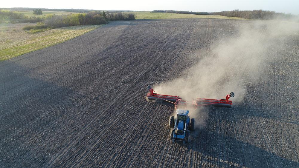 Rolling the soybean field
