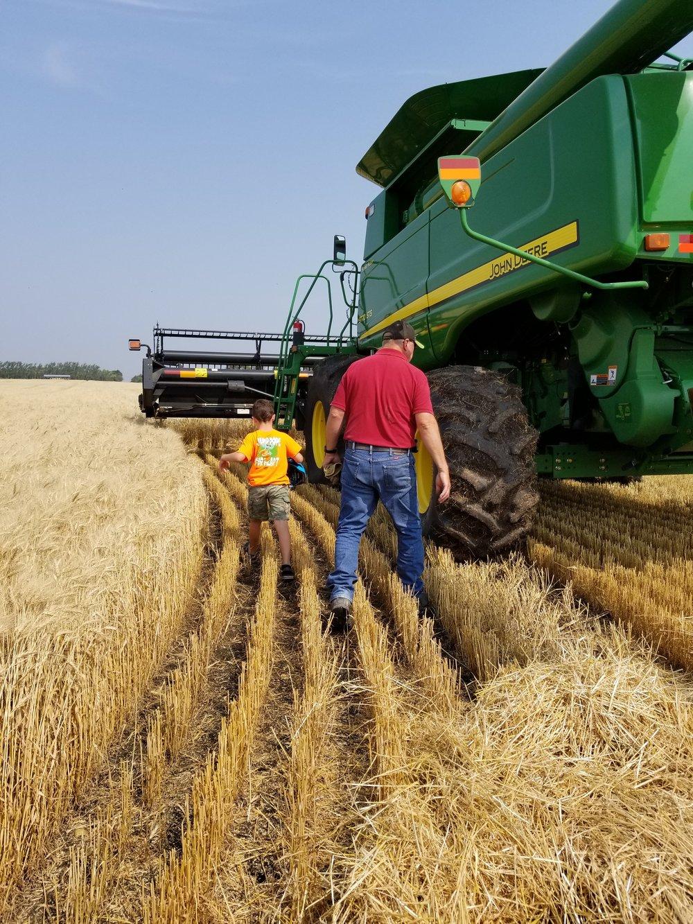 Dad Wheat.jpg