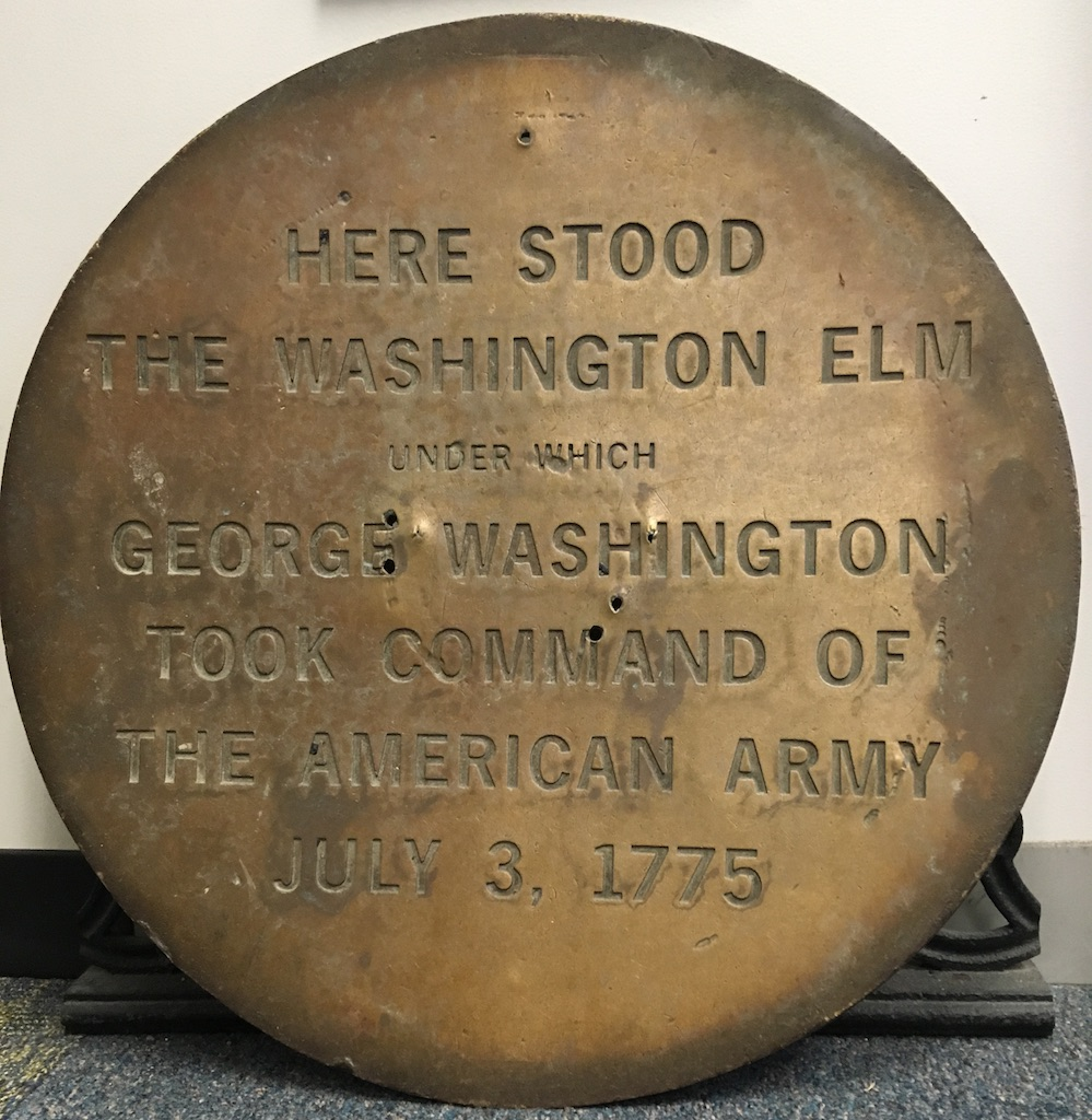 Washington Elm Plaque