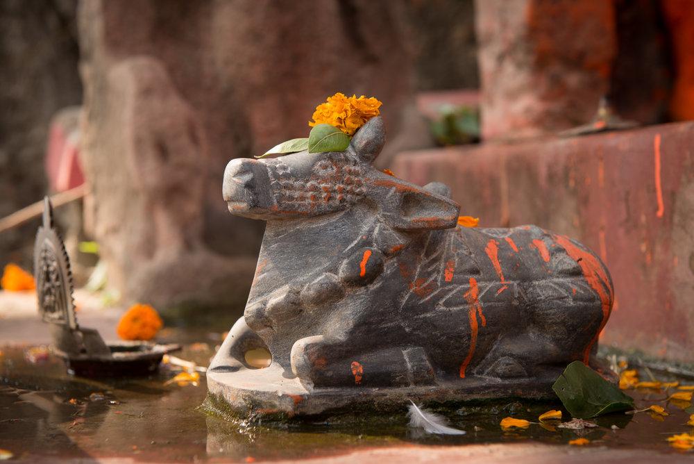 meyer-india-varanasi-16.jpg