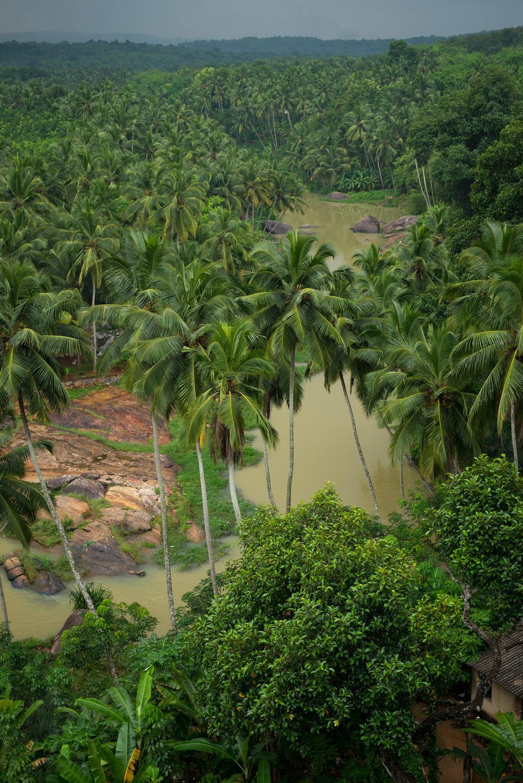 meyer-india-southeast-77.jpg