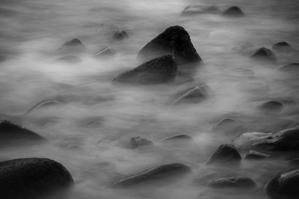 meyer-nature-19.jpg