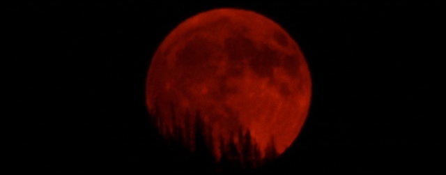 PeggyL.Full Red Moon rising.9-6-17.jpeg