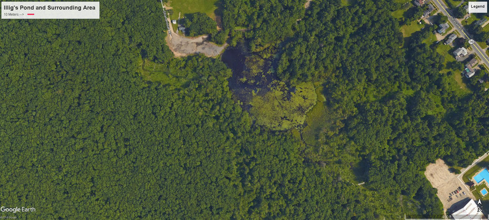 Illig's Pond and surrounding area.  Click here for a full size image.