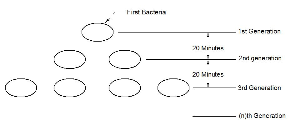 Do Now Bacterial Growth p248 Cause and Effect.JPG