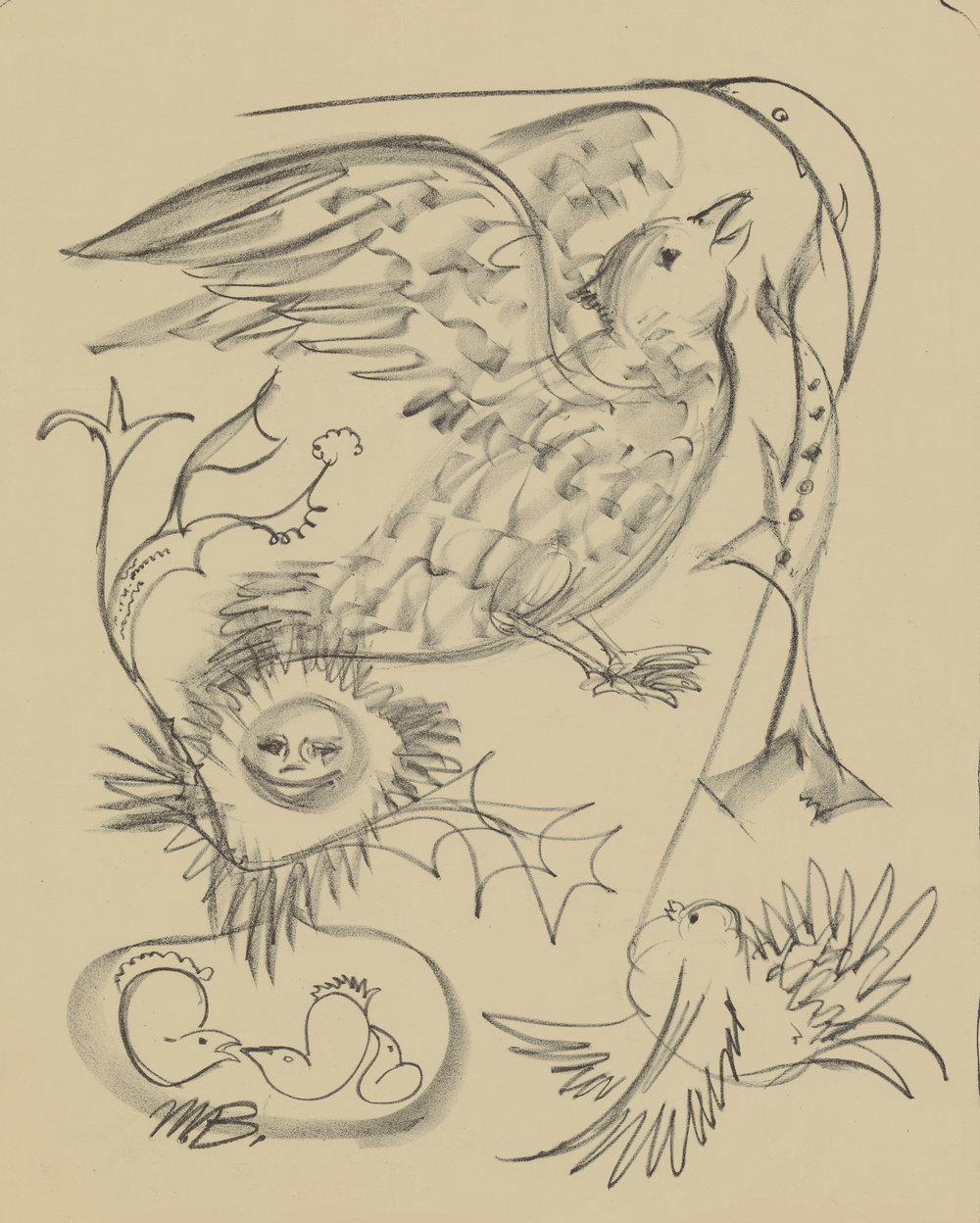 Bird Study. 1949.