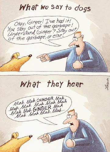 Fundamental Communication