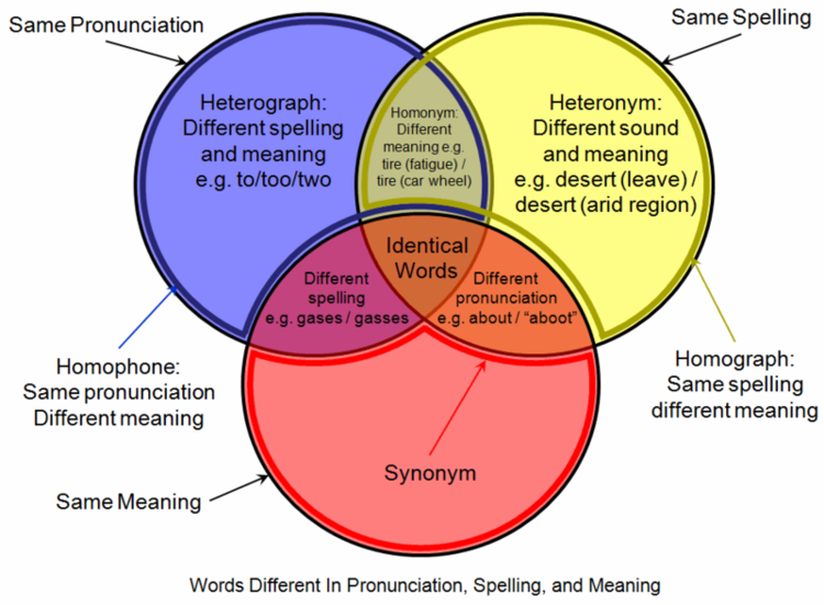 Venn Diagramcommon Ground And Conversations Prompt Leannehunt