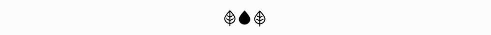 leaf_04-02.jpg