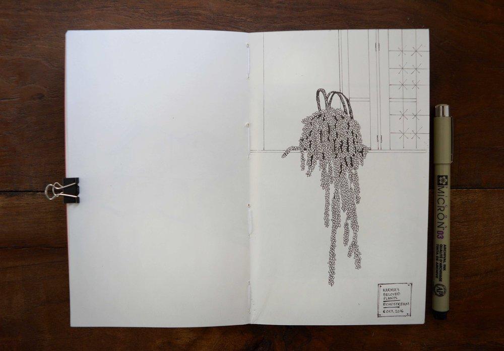 122.jpg