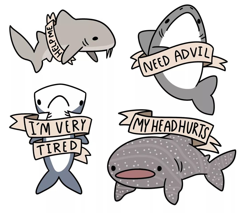 Only these sharks understand me