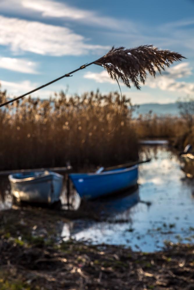 - Είναι κατασκευασμένη από κορμό βελανιδιάς, επιστρωμένη με πίσσα και έχει μήκος 3-4 μέτρα, ενώ η πλώρη της είναι πάντα στενότερη και μυτερή.Ένα άλλο είδος βάρκας που χρησιμοποιούνταν κατά το παρελθόν (κυρίως στη Μεγάλη Πρέσπα για μεγαλύτερη ευστάθεια και λόγω του μεγαλύτερου βάθους της λίμνης) είχε μήκος 7 μέτρων, με την πλώρη και την πρύμνη να είναι ευθείες και με τον πάτο του σκάφους κατασκευασμένο από φλοιούς πεύκων που ενώνονταν κατά μήκος.Σήμερα, ελάχιστες πλάβες θα δεις στις όχθες των Ψαράδων και της Μικρολίμνης, αφού αντικαθίστανται σταδιακά από πιο μοντέρνα σκάφη και τείνουν να εξαφανιστούν, μένοντας στη μνήμη ως στοιχείο παράδοσης.