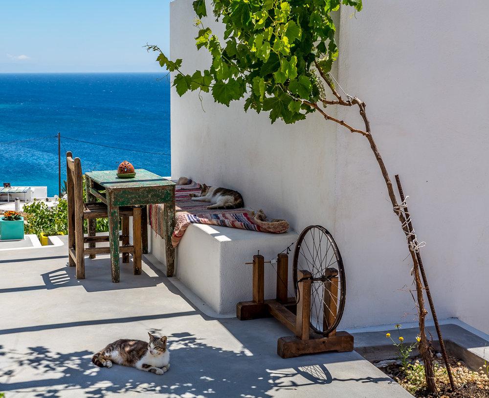 Διαμονή   Αν και η Δονούσα είναι μικρό νησί, δίνει στον ταξιδιώτη της αρκετές επιλογές διαμονής, αλλά όχι προφανώς με την ποικιλία...