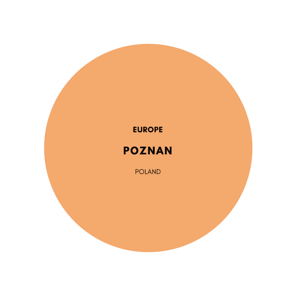 europe-poznan-people-poland-stemajourneys.png