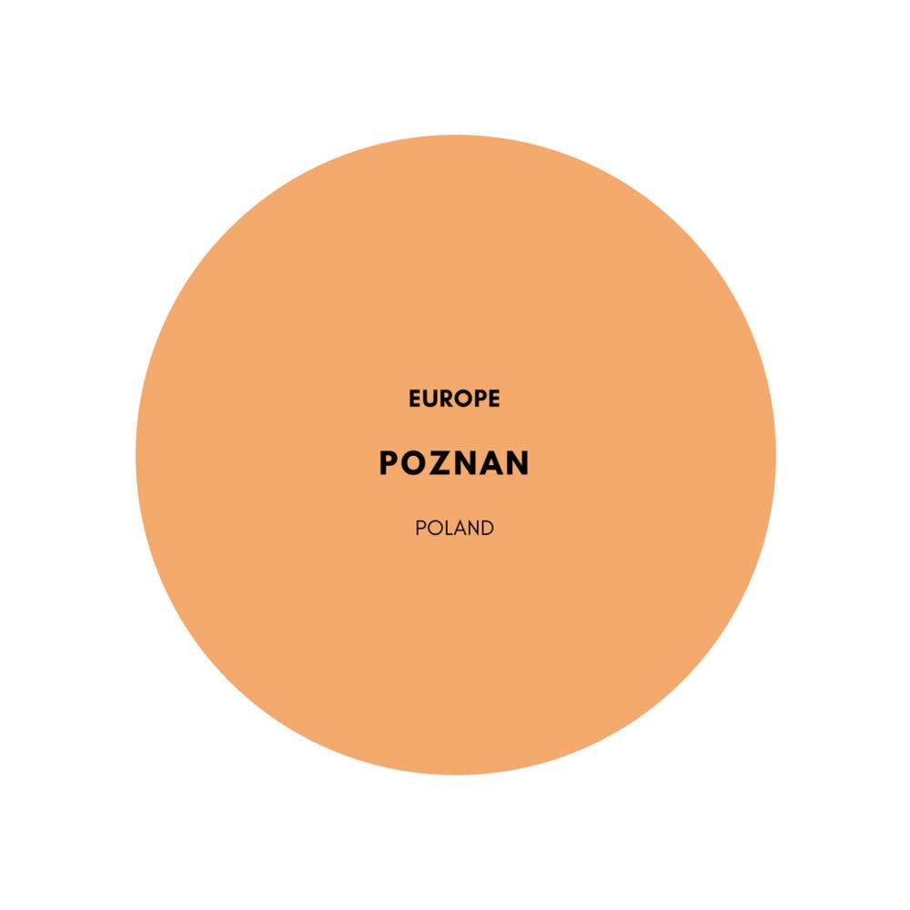 europe-poznan-people-poland-stemajourneys.png
