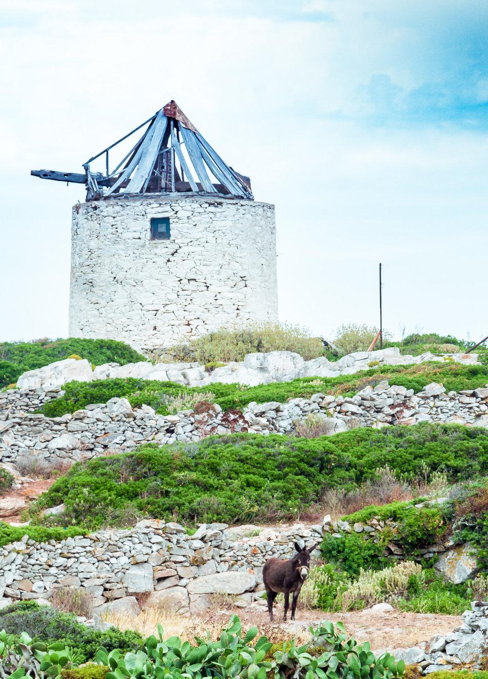 photo-tour-amorgos-greece-05-stemajourneys.com.jpg