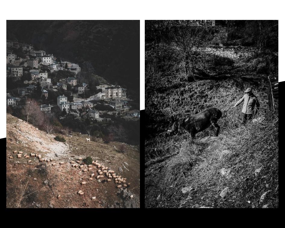 greek-shepherds-13-stemajourneys.com.jpg