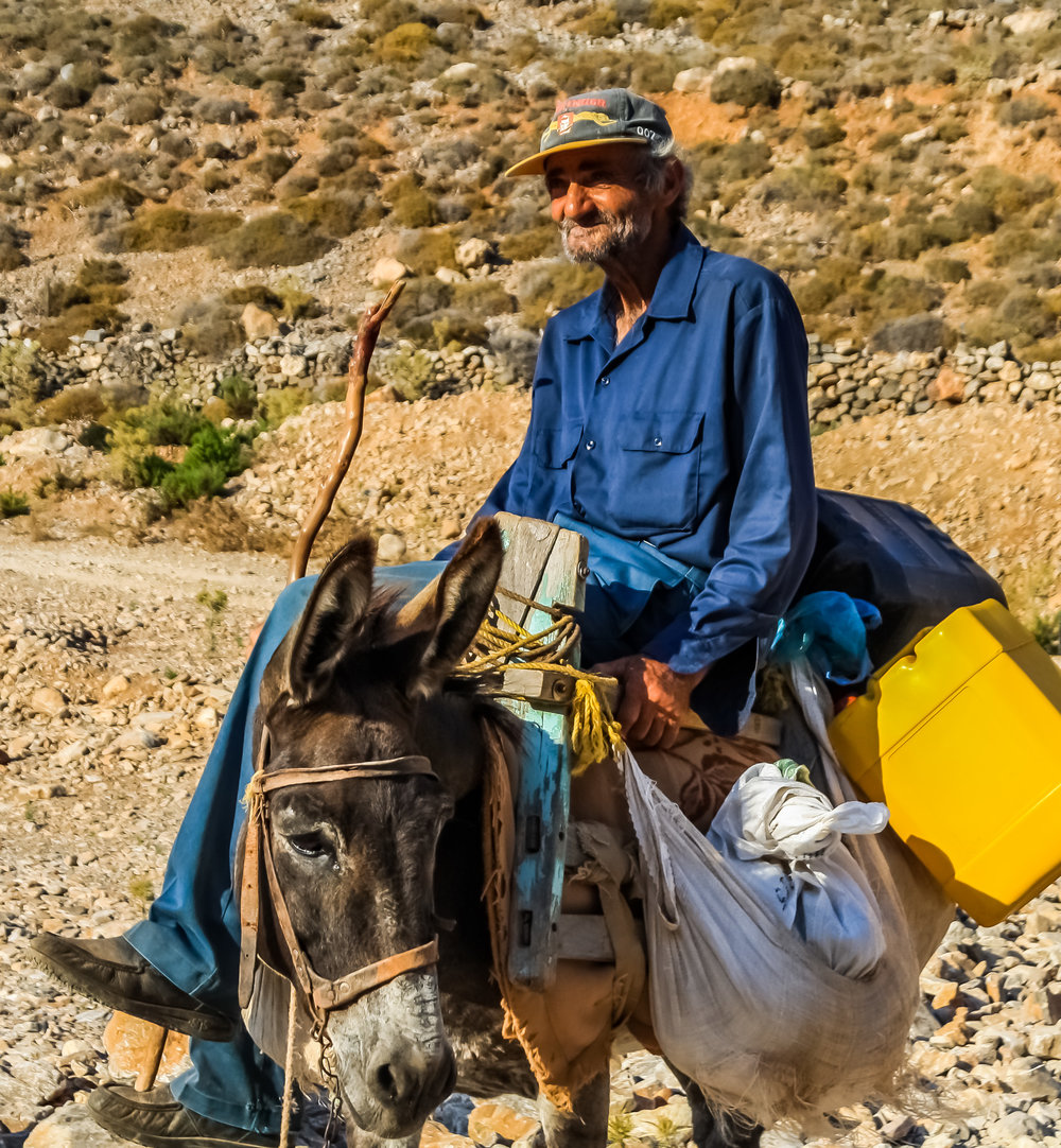 At dawn Mr Thanasis would load the family donkeys with rusks and vegetables and set off to pasture.