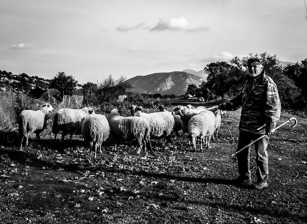 greek-shepherds-19-stemajourneys.com.jpg