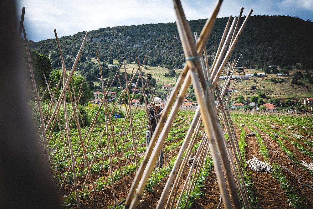 www.stemajourneys.com-prespes-2-greece-139.jpg